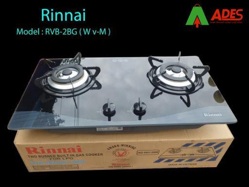 Rinnai RVB-2BG(Wv-M)N